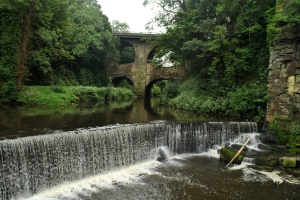 Torrs, New Mills